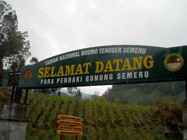 pendakian wisata semeru