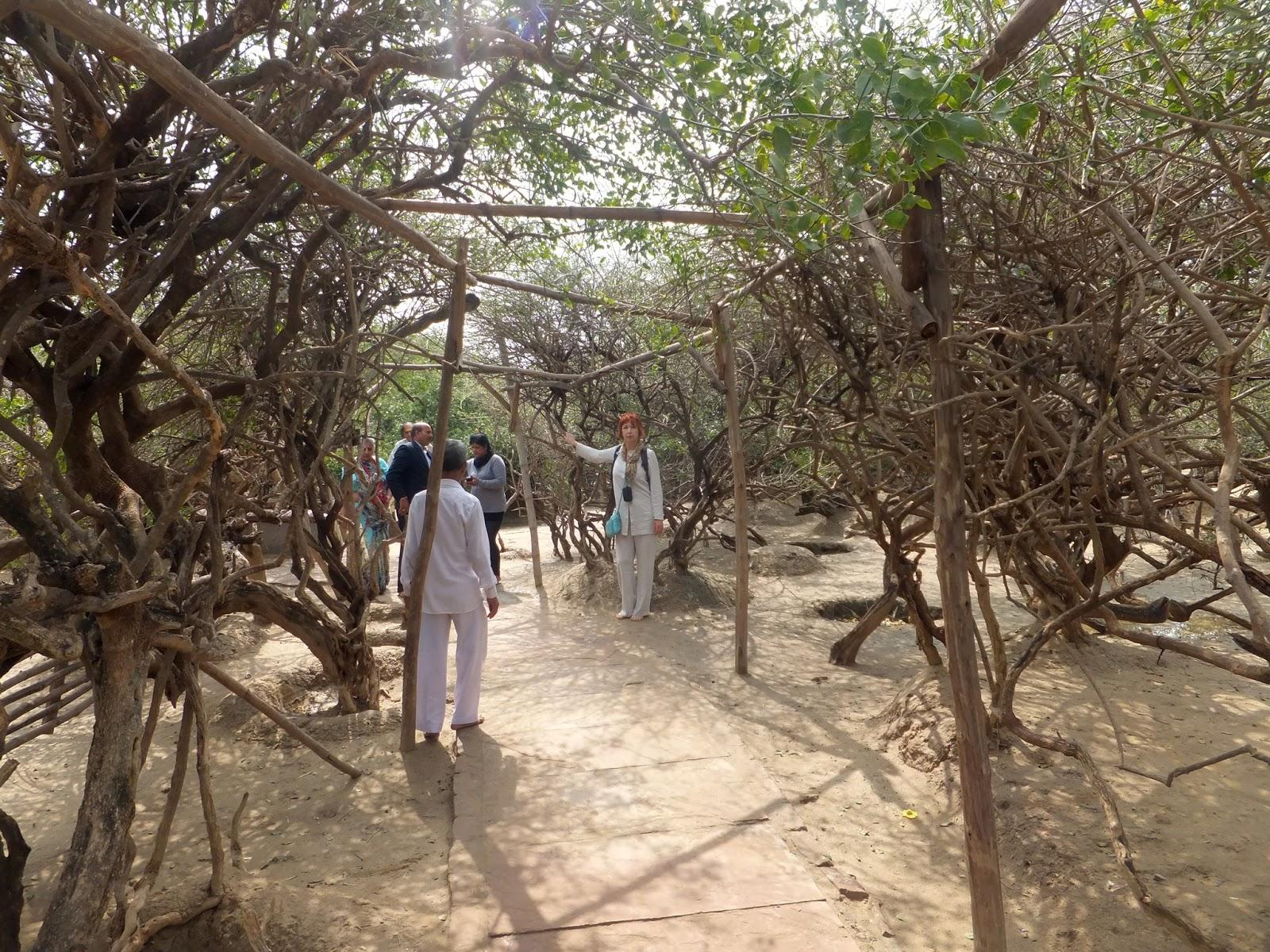 храм-сад в Индии