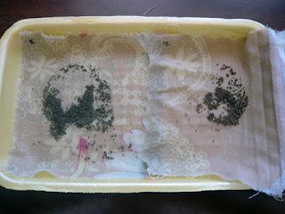 Замачивание семян в водке / Блог Дача-это просто!