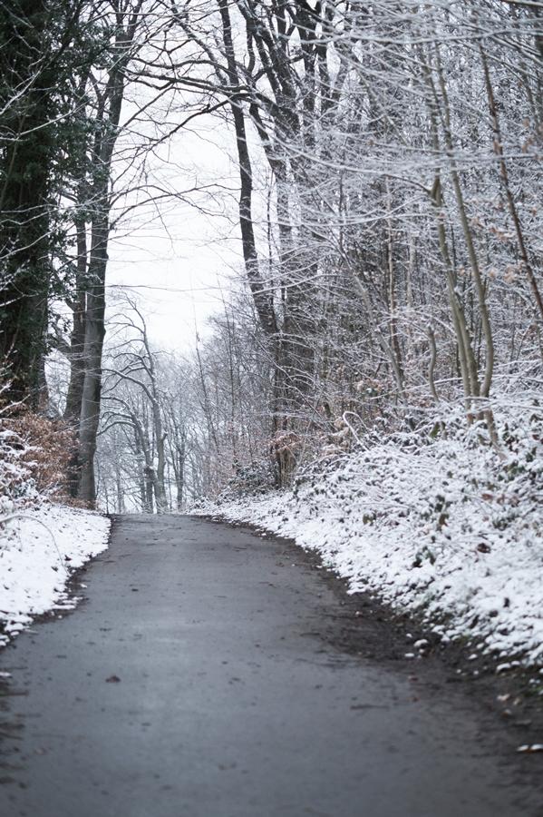 Blog + Fotografie by it's me! - Draussen - Frau Frieda sucht Schnee, Fußweg im verschneiten Wald