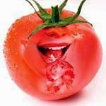 Ricos benefícios do tomate