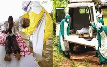 Ebola: Nigeria's 1,479 illegal borders may spread virus