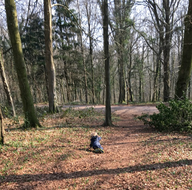The Fforest Fawr Sculpture Trail toddler taking a tumble