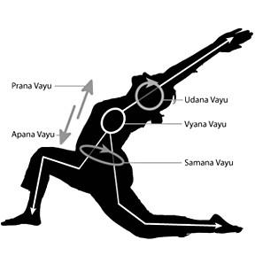 prana yoga, hath yoga, pranic energy