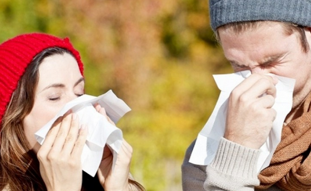 Maintain Cleanliness, the Best Way to Treat Seasonal Allergies
