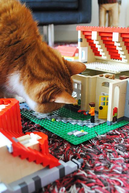 Een grote rode kat die snuffelt aan de voorkant van een huis van lego waar een deel van het dak vanaf is gevallen
