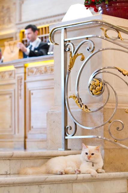 Le Bristol Hotel (París)