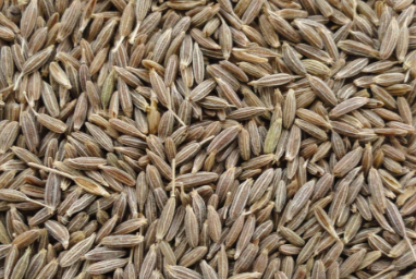 Cumin Seeds / Jeera Improves Digestion