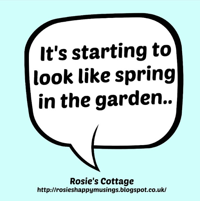 It's starting to look like spring in the garden honeys...