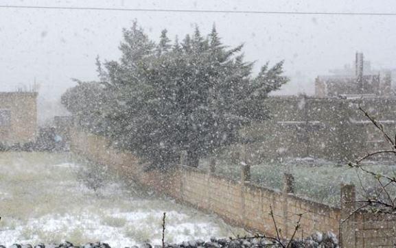 أمطار وثلوج بالسويداء ومديرية الزراعة تدعو إلى اتخاذ الإجراءات اللازمة للتعامل مع الصقيع