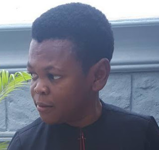 osita iheme join politics