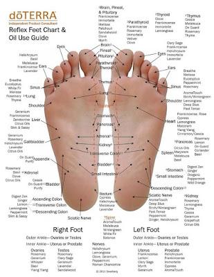 titik refleksi telapak kaki