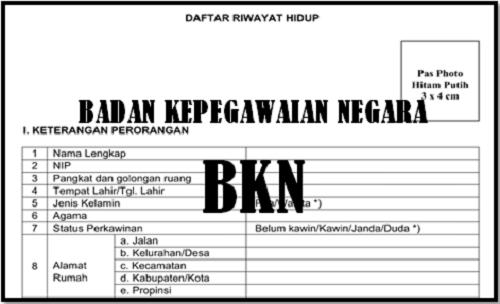 Formulir Daftar Riwayat Hidup Para PNS dan CPNS Oleh BKN Terbaru  Homesdku