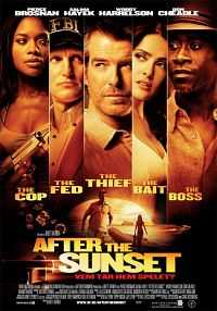 After The Sunset (2004) Hindi Dubbed 300mb Download Dual Audio BrRip