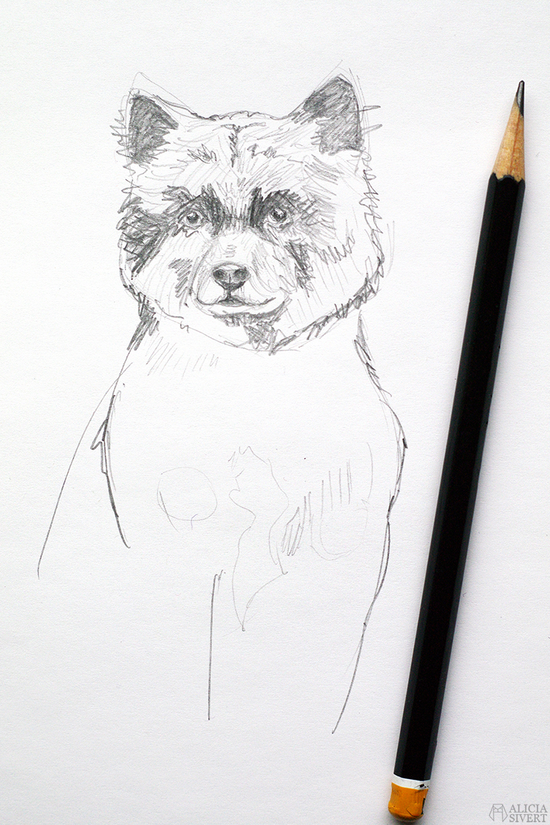 aliciasivert alicia sivert alicia sivertsson måla teckna teckning skiss sketch dog hund finsk lapphund kevät skapa skapande kreativitet diy konst art hantverk handarbete