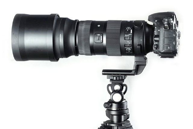 Sigma 150-600mm Sports with Sunwayfoto LF-M1 replacement foot on DT-02 head