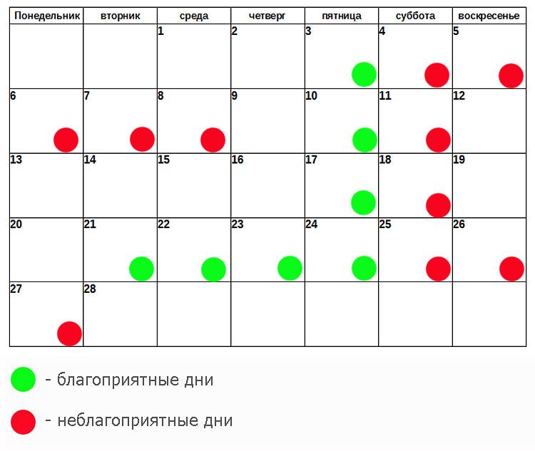 календарь красоты на февраль