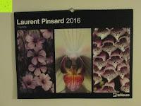 Erfahrungsbericht: Laurent Pinsard 2016 - Triplets Posterkalender Naturkalender quer - 64 x 48 cm