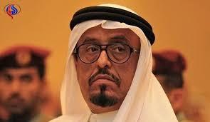 ضاحى خلفان, قرار مصرى بإنشاء, مدينة اكبر عشر مرات من دولة قطر,
