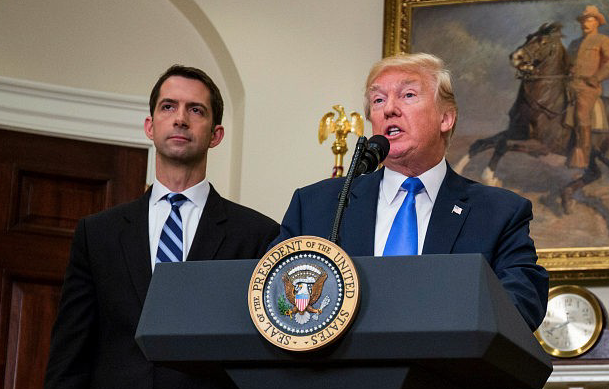 Tom Cotton Fires Back: American People Want 'Trump's Vision of Immigration Policy, Not Lindsey