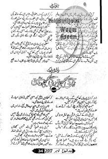 Kabhi roshni kabhi teergi by Rashida Riffat Online Reading