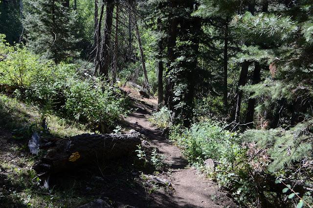 bit of trail