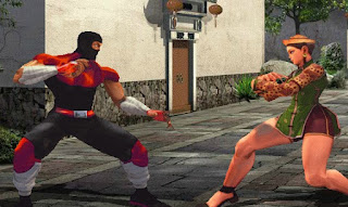 The Perfect Fighter Awesome Fighting Online Games free play