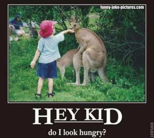 Hey Kid, do I look hungry?