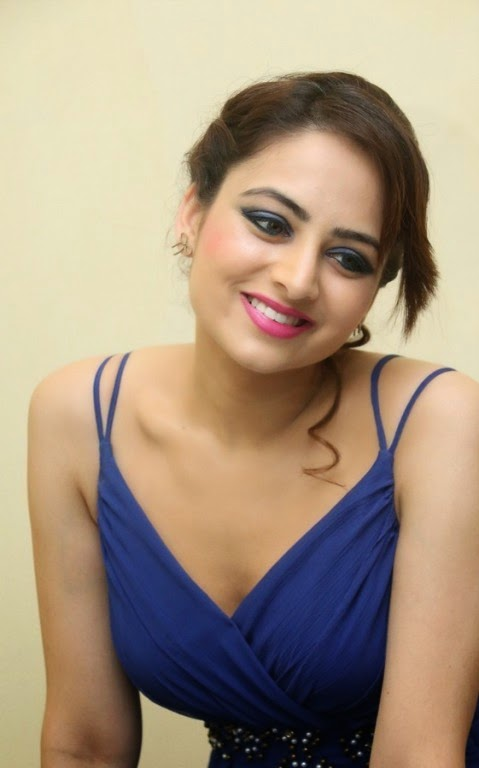 Actress Zoya Afroz Picture Gallery in Blue Long Dress  8.jpg