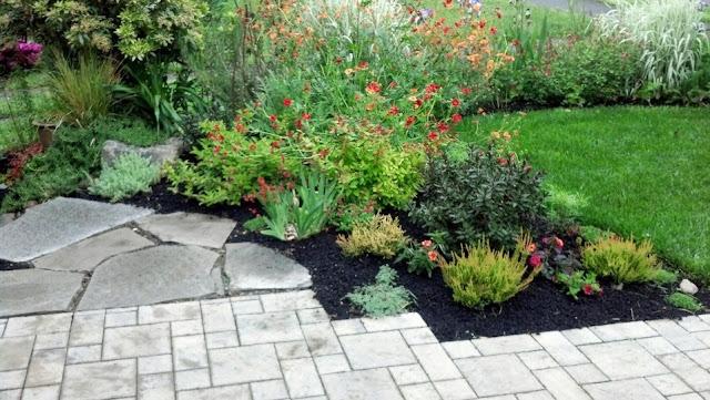 jardín con plantas de flor