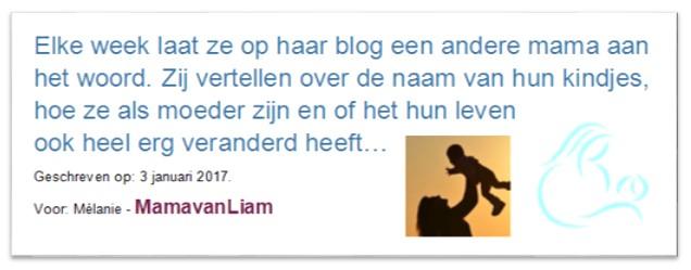 Gastenblog MamavanLiam
