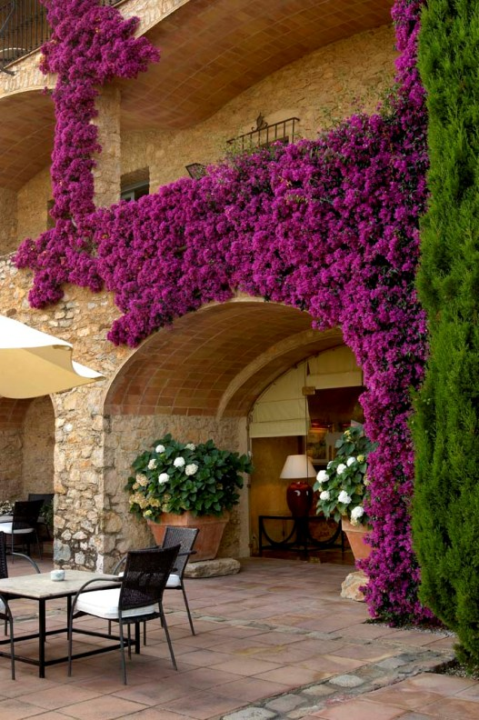 Hotel Mas de Torrent