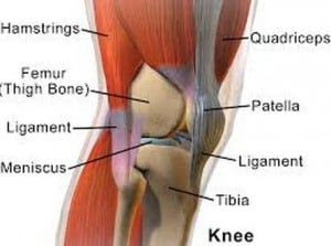 Knee Injury: Types, Symptoms, Treatment And Home Remedies