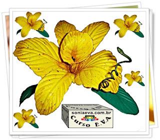 Diy Orquídea de E.V.A