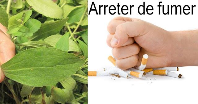 stevia pour arreter de fumer avis