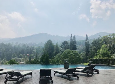 Hotel Indah Tengah Hutan Yang Paling Romantis