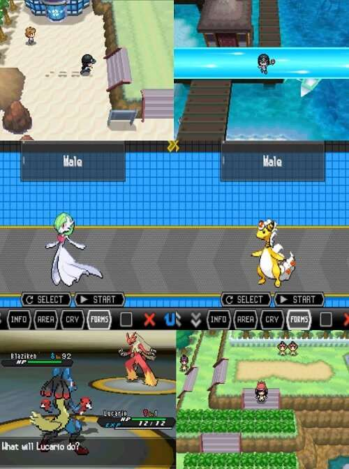 pokemon black nds torrent