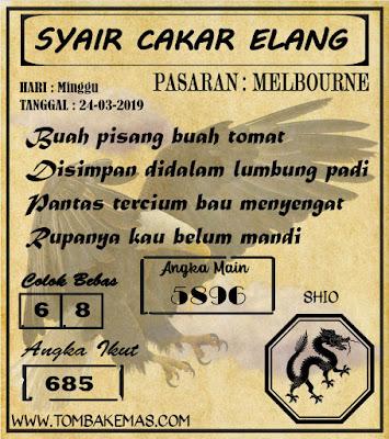 SYAIR MELBOURNE, 24-03-2019