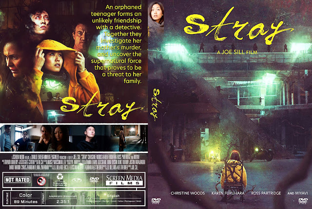 Stray DVD Cover