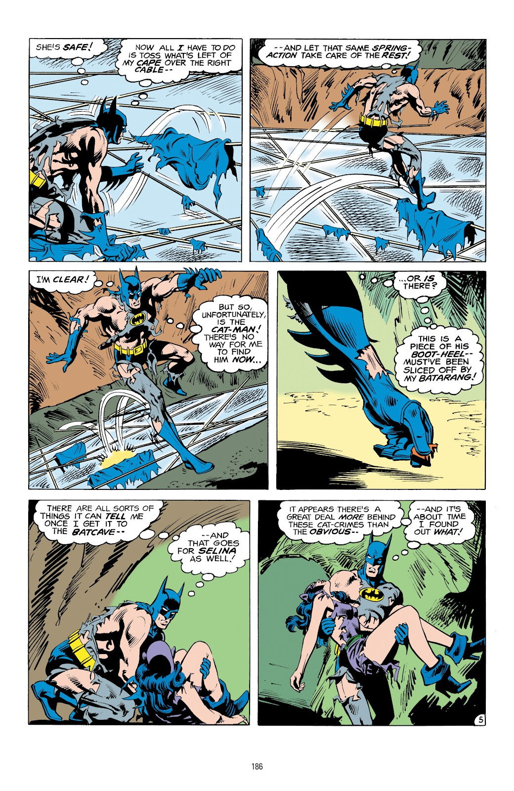 Read online Catwoman: A Celebration of 75 Years comic -  Issue # TPB (Part 2) - 87