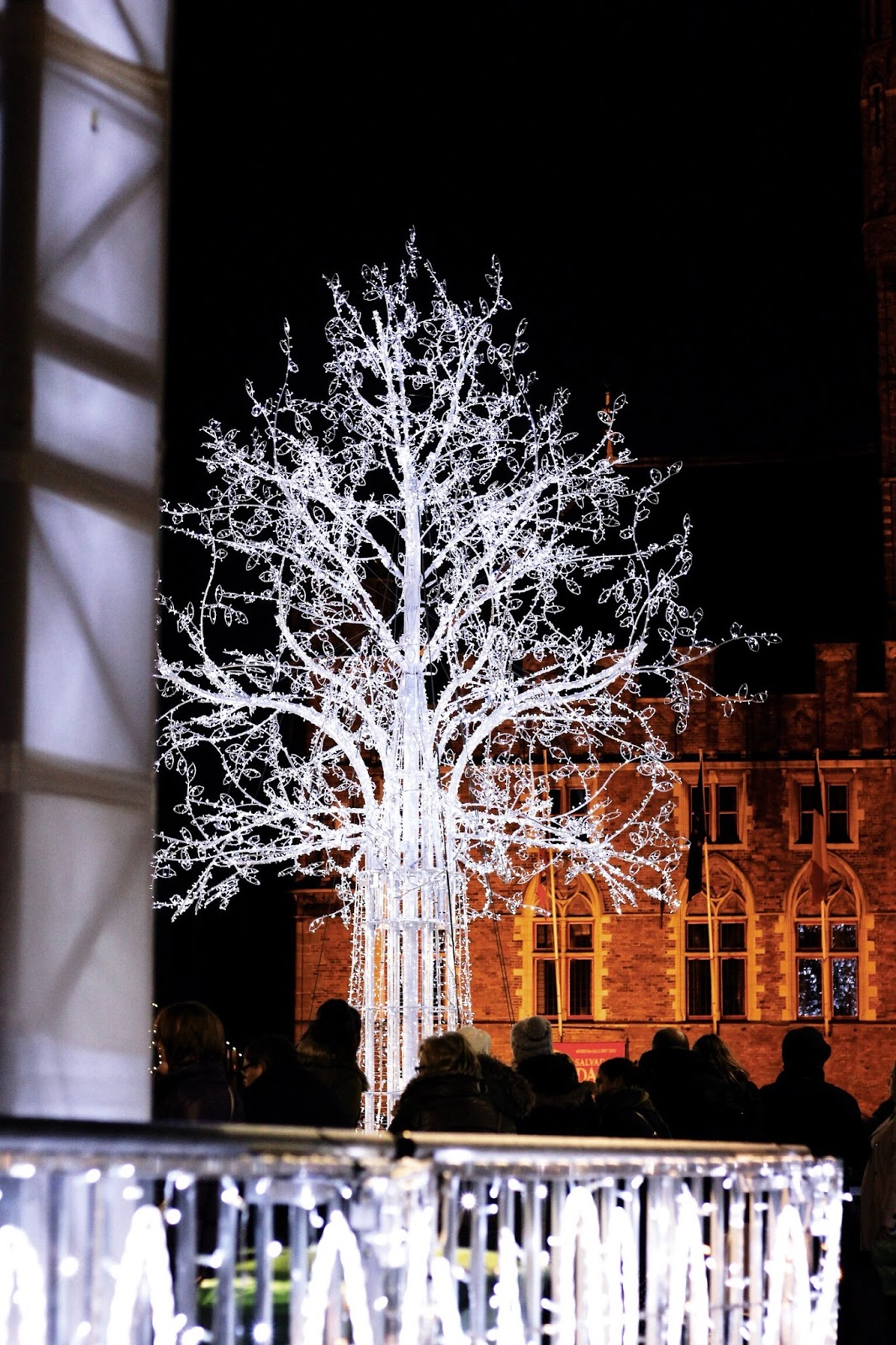 Bruges ice rink illuminated Christmas tree