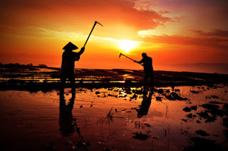 Kisah tauladan seorang petani menemui mata air ajaib