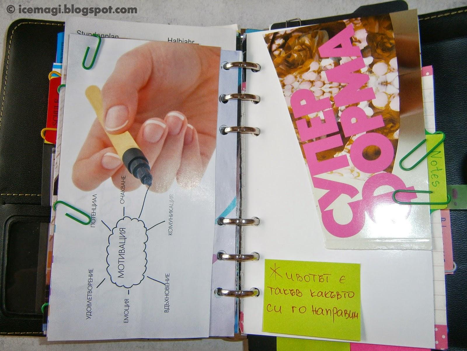 organizer/planner