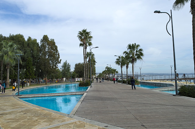 Exotic Place. Limassol walking area next to the sea.