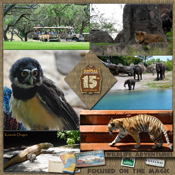 Disney's Animal Kingdom Wildlife Wednesday