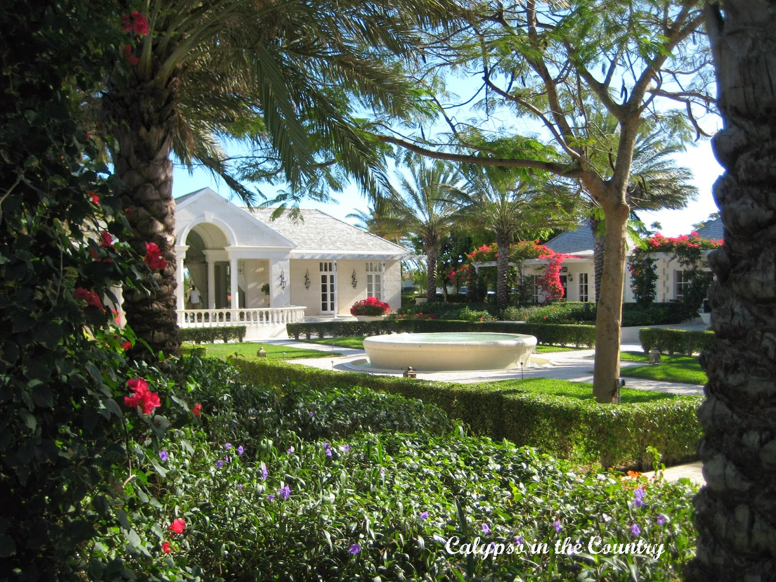 Beautiful landscaping in Turks and Caicos