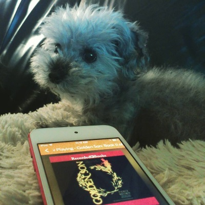 Murchie lays on a fuzzy white pillow. In front of him is a red-bordered iPod with Golden Son's cover on its screen. The cover features a gold laurel crown against a black background. One of the crown's leaves is on fire.