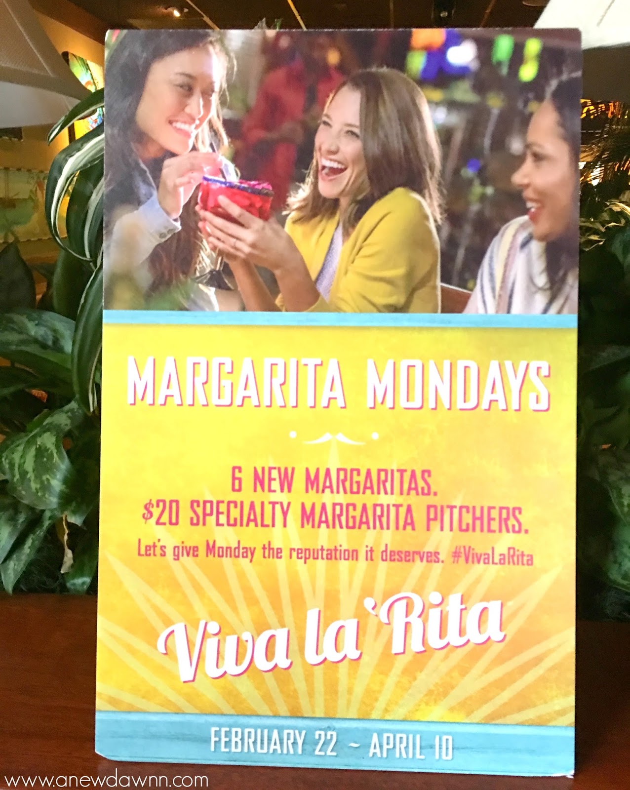Bahama Breeze Viva La Rita
