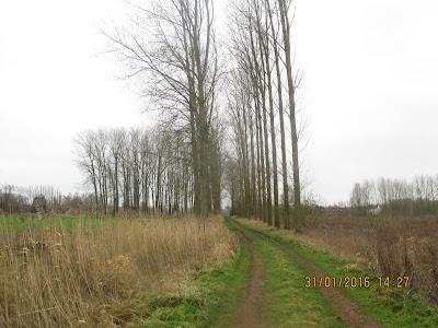 oude moerassen van Laplaigne