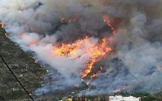 http://www.efeagro.com/noticia/agosto-ardido-hectareas-incendios/
